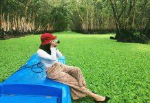 Kinh nghiệm du lịch rừng tràm Trà Sư ở An Giang hấp dẫn du khách